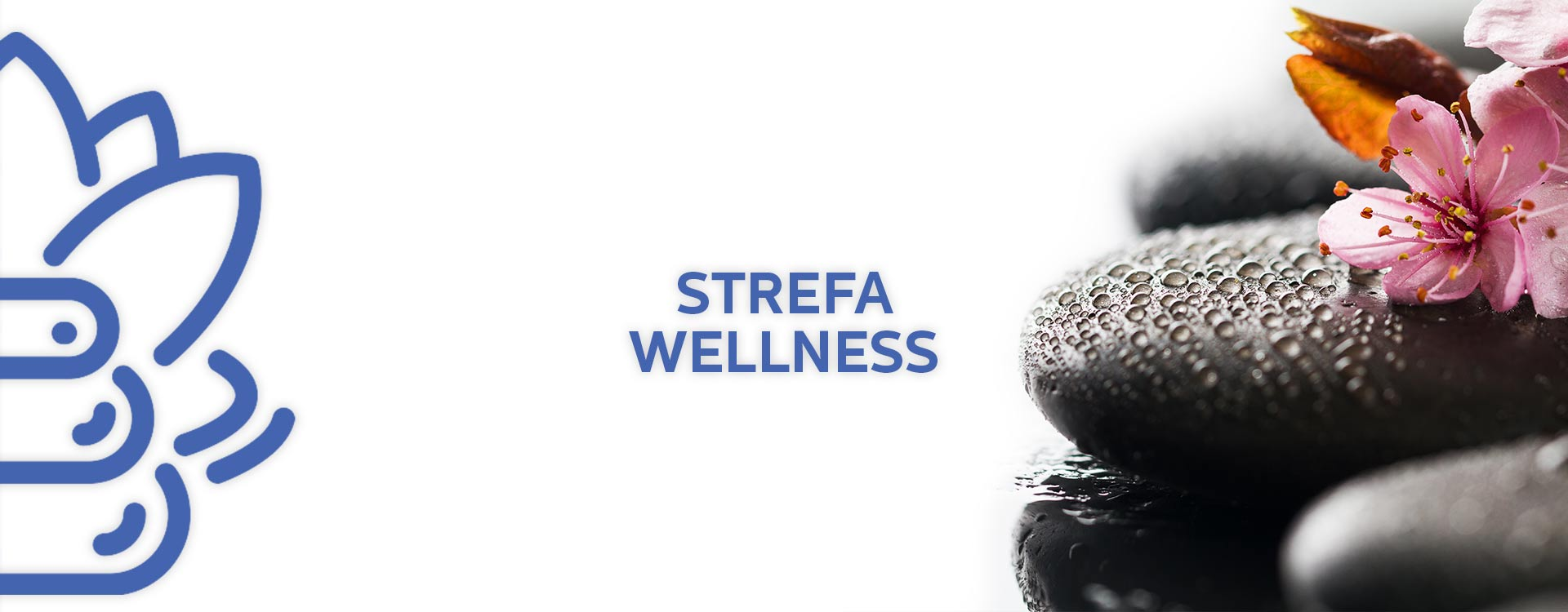strefa_wellness
